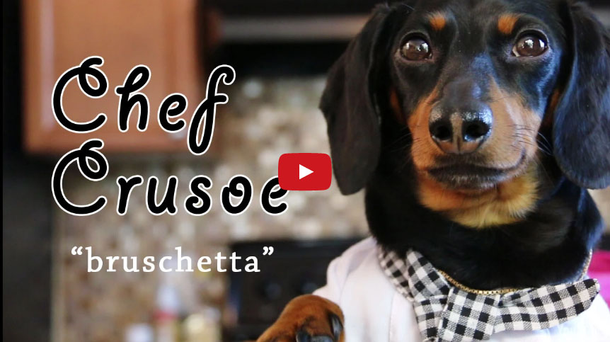 Cane che cucina? Chef Crusoe incanta il web (Video)