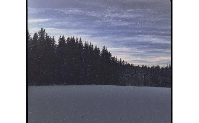 """Esordio dei John Moose: Un """"album nella foresta"""""""
