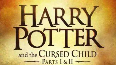 Photo of Harry Potter, 8 Uscita in Italia: Solo il libro o anche il film?