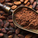 Cacao: proprietà, benefici per la salute e controindicazioni