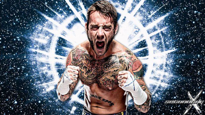 WWE Cm Punk: Presto il ritorno?