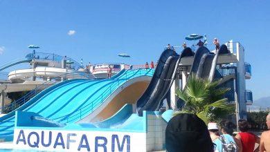 Photo of Aquafarm Salerno: gli orari di apertura e i prezzi