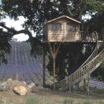 Vacanze Relax Lazio Estate 2016: Migliori offerte low cost