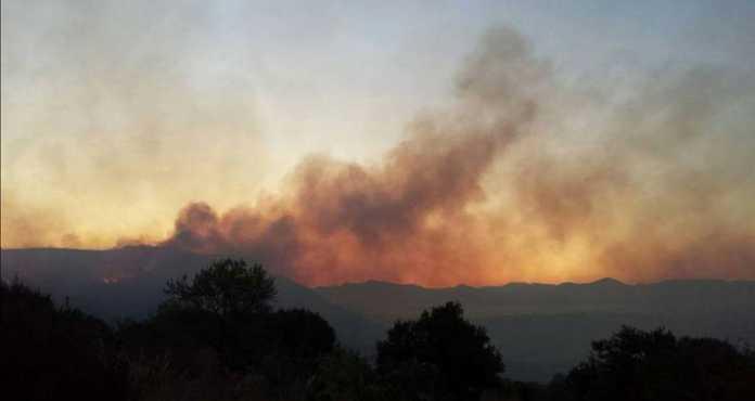 Incendio nel Cilento, il Golfo di Policastro brucia (Video e Foto)