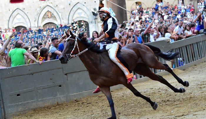 Palio di Siena 2016: Lupa vincitore