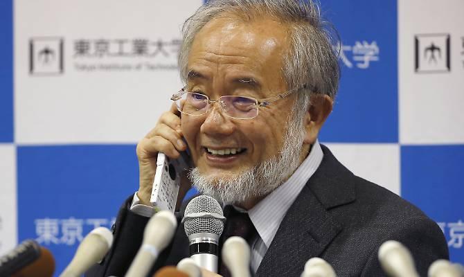 Ohsumi vince il Nobel per la medicina: ecco chi è il biologo
