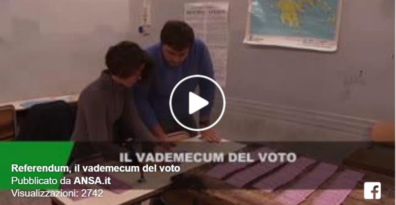 Vademecum Ansa, Come si vota per il Referendum?
