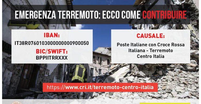 Donazioni Terremoto Centro Italia, soldi bloccati in Tesoreria