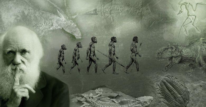 Accadde Oggi 12 febbraio, nel 1809 nasceva Charles Darwin: Biografia 2