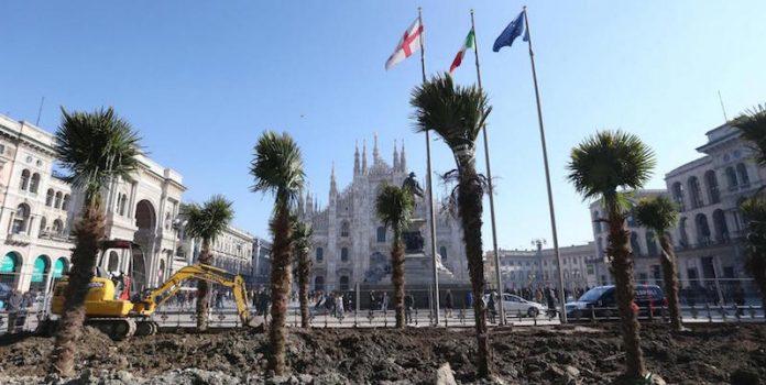 Milano, palme e banani in Piazza Duomo (foto) 1