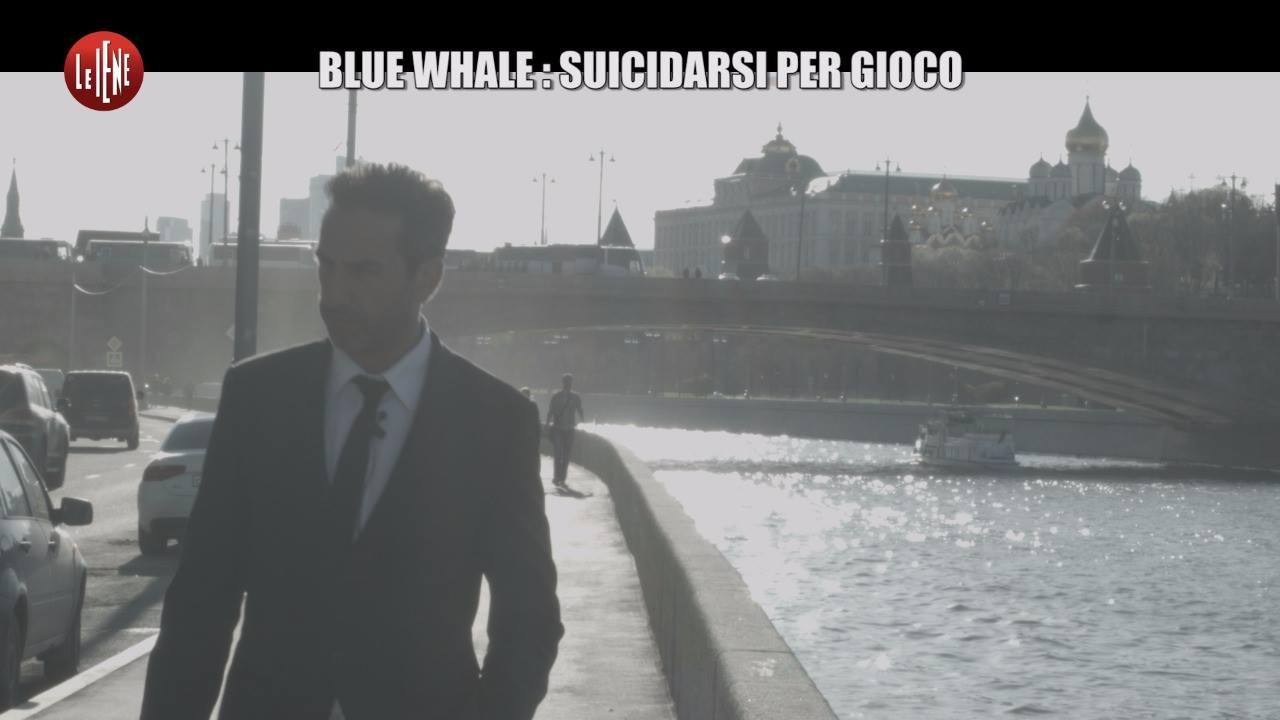 blue-whale-le-iene