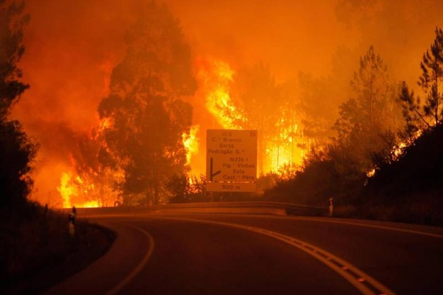 Incendio Portogallo Pedrógão Grande