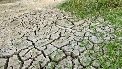 Allarme-siccità-acqua-Roma-Capitale-
