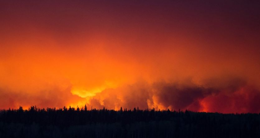 Incendi Canada Usa