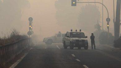 Photo of Incendio Castel Fusano, piromane arrestato: opera della criminalità organizzata?