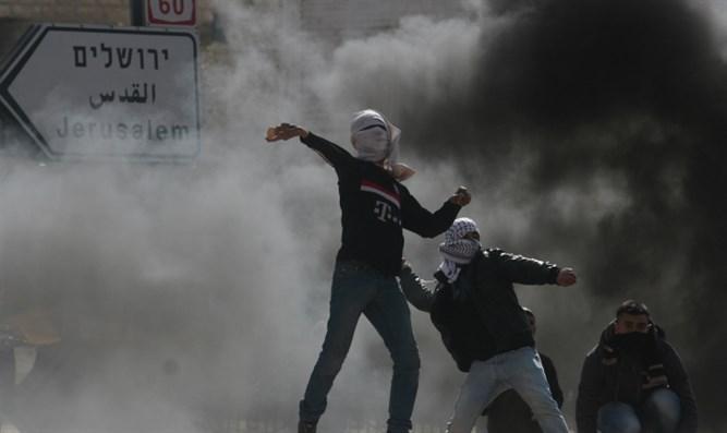 manifestanti palestina