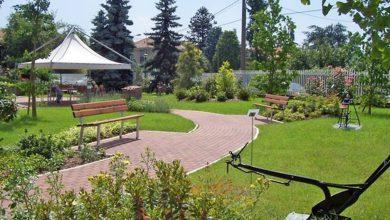 Photo of Giardini terapeutici in Italia e ortoterapia: Curare con la natura.