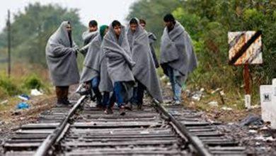 Photo of Arrestato migrante con il passaporto Ue in Ungheria