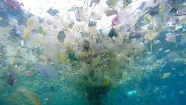 sea-of-plastic-113128