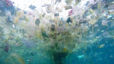 Photo of Indonesia, mare inquinato dalla plastica (FOTO)