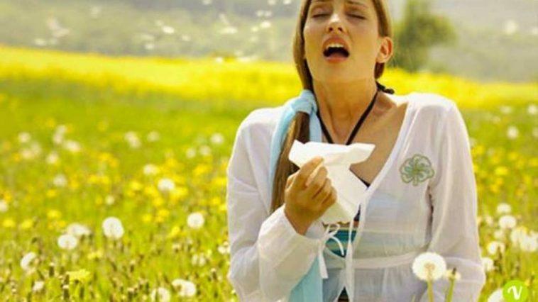 Allergia-rimedi-sintomi