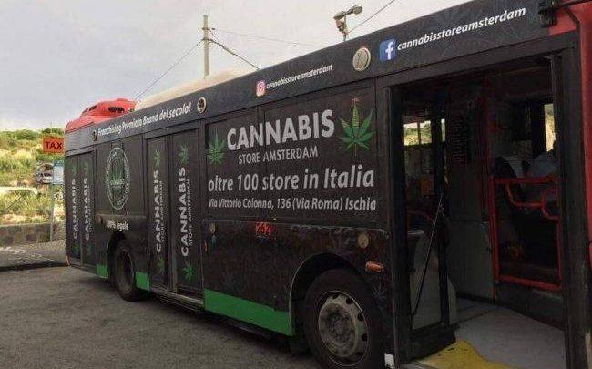 bus marjuana