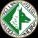 avellino calcio news