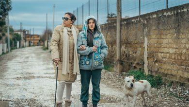 Photo of Il Vizio della Speranza: Recensione in anteprima del Film