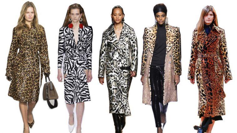 Animalia Fashion 2019