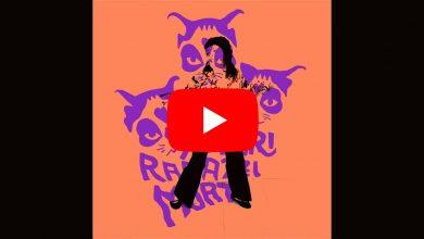 Photo of Calamita dei Tre Allegri Ragazzi Morti: video, testo e significato della canzone