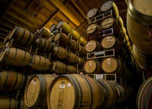 fermentazione-vino-fragolino