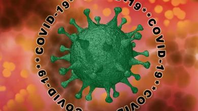 Photo of Coronavirus in Campania, il bollettino del 28 marzo 2020