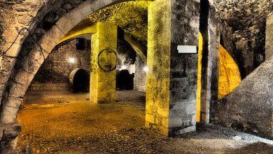 Photo of Il vino italiano riparte dalle sue eccellenze