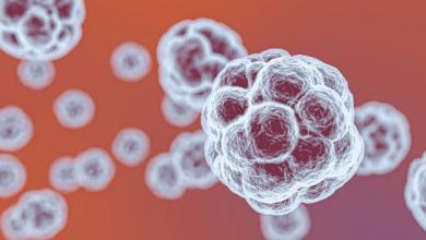 Photo of Bollettino Coronavirus 15 aprile: i dati della Protezione Civile