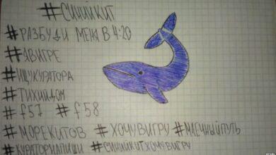 Photo of Blue Whale: cos'è e come si svolge il gioco che spinge al suicidio