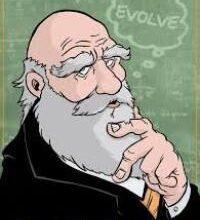 Photo of Cosa sono i Darwin Awards e perchè si assegnano alle morti più stupide?