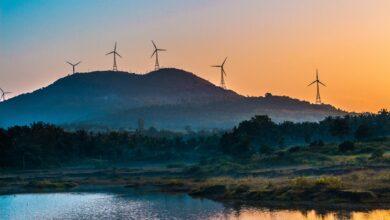 Photo of Energia verde in continua crescita: +45% durante il 2020